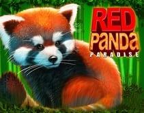 Red Panda Paradise